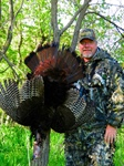 Outdoors with Mike Roux: Gobblers in the Rain