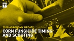 Agronomy Update: Corn Fungicide Timing and Scouting