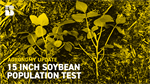 Agronomy Update: 15 In. Soybean Population Study