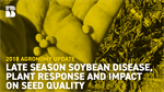 Agronomy Update: Late-Season Soybean Disease, Plant Response and Impact on Seed Quality