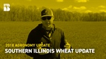 Agronomy Update: Southern Illinois Wheat