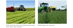 CropTalk: Cover Crop Termination Methods