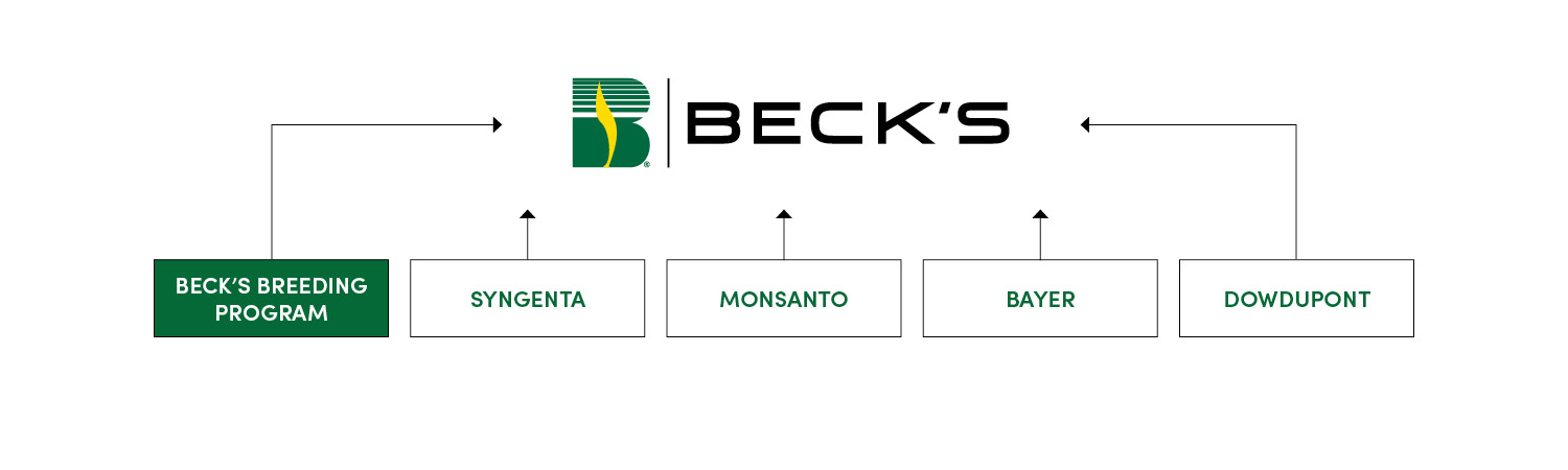 at beck's, we happily put aside pride and competition to achieve one goal –  provide our customers with the very best seed products