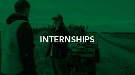 Internships-oppoortunities-small