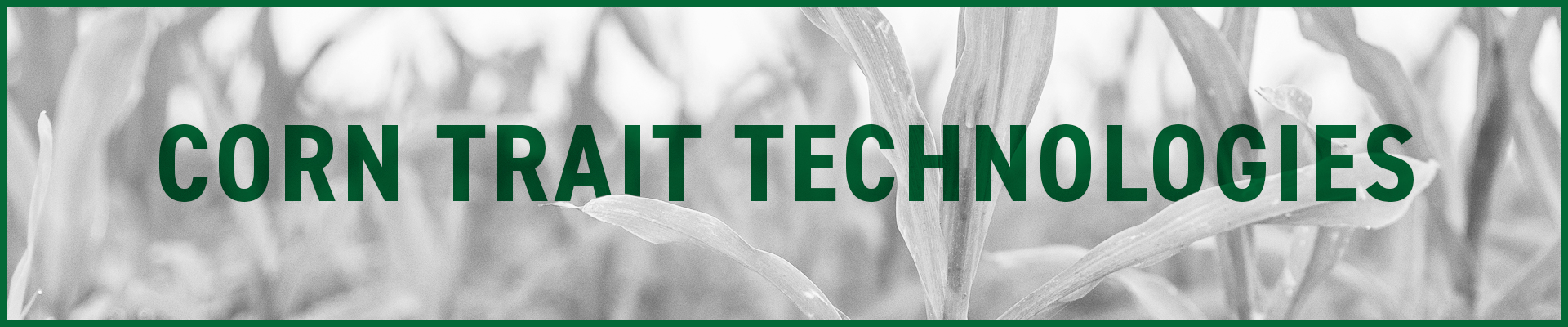 Corn-Trait-Technology